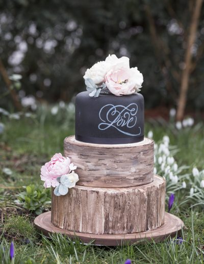 Rustic Log & Chalkboard Wedding Cake
