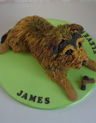 Scruffy Dog Cake Cake Cambridgeshire
