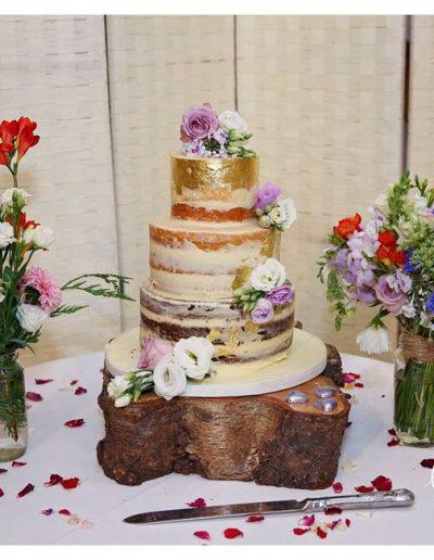 anessa rustic cake